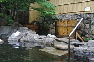 DSC_4314上高地温泉ホテル露天.jpg