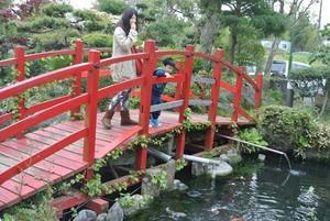 池にかかる橋.jpg