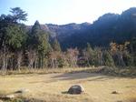 森のテラス眺望_140611.jpg