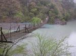夢の架け橋.jpg