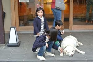 子供に人気のマスコット犬.jpg
